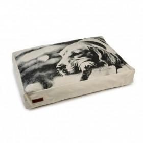 BEEZTEES cuscino beige modello Hangout rettangolare per cani