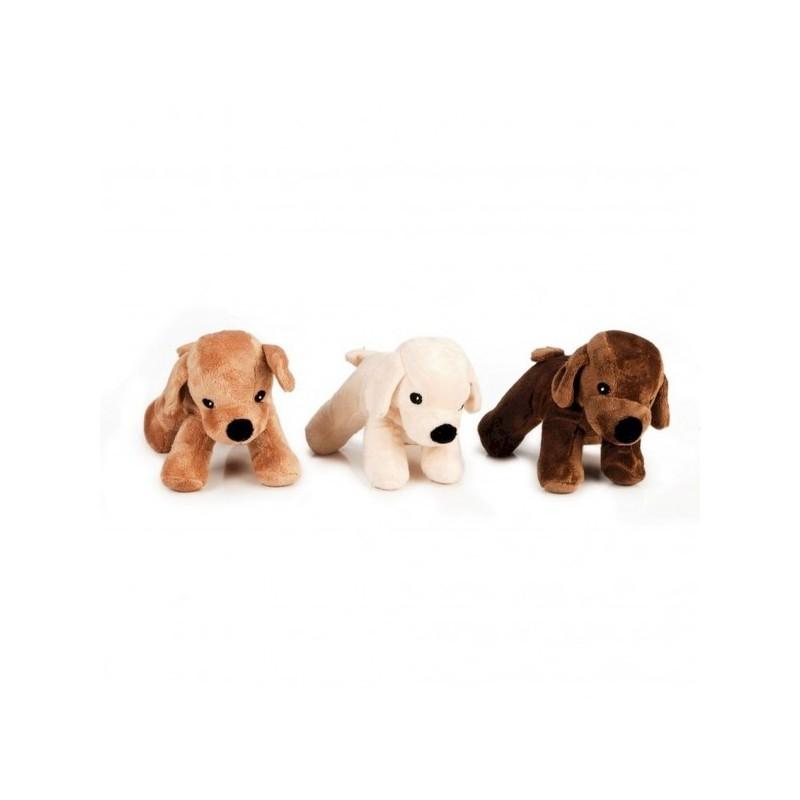 Beeztees cagnolino peluche Asco giocattolo per cani